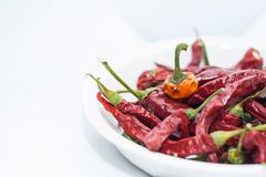 Dry Red chili peppers. In a bowl Stock Image