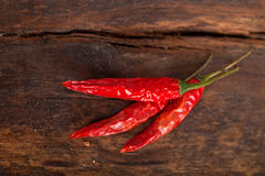 Dry red chili peppers Stock Photos