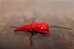 Dry red chili peppers Royalty Free Stock Images