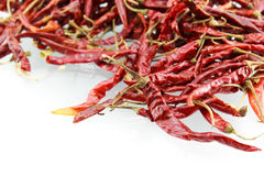Dry red chili on white background Royalty Free Stock Photos