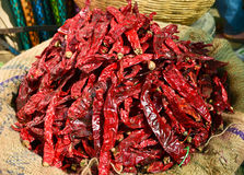 Dry Red Chilly Royalty Free Stock Photography