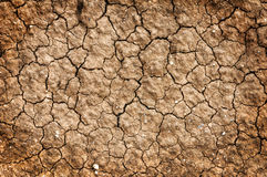 Dry red clay soil texture Stock Photos
