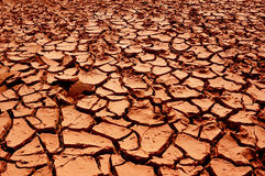 The dry red earth. The earth without any water and crack Royalty Free Stock Image