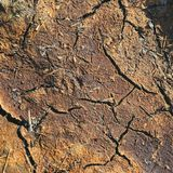 Dry red earth with cracks Royalty Free Stock Photo