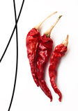 Dry red hot chili peppers Stock Images