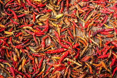 Dry red hot chili peppers at asian market. Organic food. Background Stock Photo