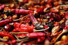 Dry red hot peppers for spice stock photos