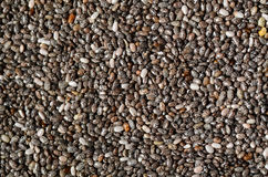 Dry  Red Lentils Royalty Free Stock Images