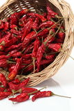 Dry red pepper Royalty Free Stock Photos