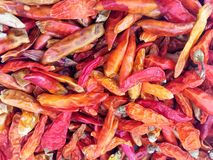 Dried hot red pepper Stock Photo