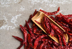 Dry red pepper Royalty Free Stock Image