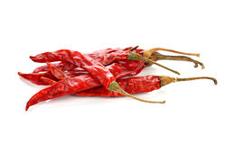 Dry red pepper Stock Photography
