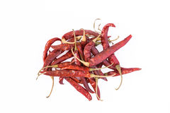 Dry red pepper Stock Image