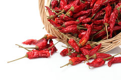 Dry red pepper Royalty Free Stock Photography
