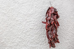 Dry red peppers hanging on a white wall Royalty Free Stock Image