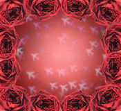 dry red rose frame on blur airplane bokeh Royalty Free Stock Image