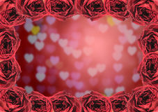 dry red rose frame on blur heart bokeh background Stock Photography