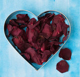 Dry red rose petals. Closeup of dry red rose petals in a heart shaped form Royalty Free Stock Images
