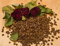 Dry red roses on coffee seeds and wooden background Stock Photography