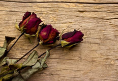 Dry red roses on old wooden Royalty Free Stock Images