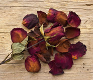 Dry red roses on old wooden Stock Images