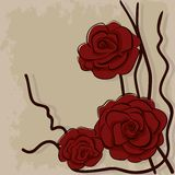 Dry red roses on stone Royalty Free Stock Images
