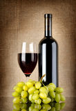 Dry red wine Stock Photography