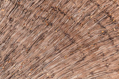 Dry reeds thatch texture background. Straw pattern. Dry reeds thatch texture background. Tidy straw pattern royalty free stock photo