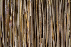 Dry Reeds Wall Texture Royalty Free Stock Image