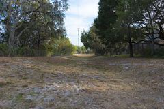 Dry Retention pond Royalty Free Stock Photography