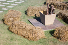 Dry rice straw in the garden Royalty Free Stock Image