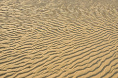 Dry rippled golden sand, ideal for backgrounds. And textures Stock Image