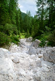 Dry river Royalty Free Stock Photography