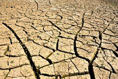 Dry river. Cracked ground in dry river Stock Images