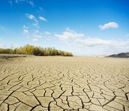 Drought period of rivers, and woods Royalty Free Stock Photos