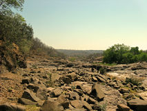 Dry River bed. In Zimbabwe during summer months Royalty Free Stock Photos
