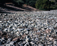 Dry River Bed Royalty Free Stock Photography