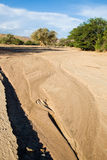 Dry River Bed of Huab Royalty Free Stock Photo