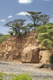Dry river bed in Kenya. An empty river bed between Marigat and Lake Baringo in Kenya during dry season Royalty Free Stock Images
