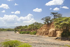 Dry river bed in Kenya. An empty river bed between Marigat and Lake Baringo in Kenya during dry season Royalty Free Stock Photos