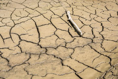 Dry River Bed. Royalty Free Stock Images