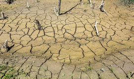 Dry River Bed. Royalty Free Stock Photo