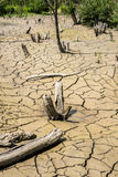 Dry River Bed. Royalty Free Stock Photography
