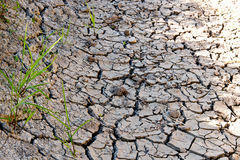 Dry river bed Stock Photos