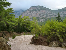 Dry river bed in the Taurus Mountains. In the fall near the village of Beldibi in Turkey royalty free stock photos