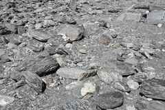 Dry river bed texture Stock Image
