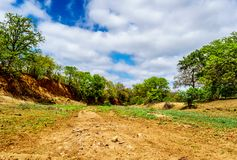 Dry river in November, the end of the dry season, in Kruger National Park. In South Africa Royalty Free Stock Photos