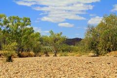 Dry river valley, Australia Stock Image