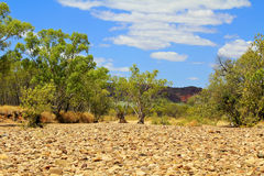 Dry river valley, Australia Royalty Free Stock Photo