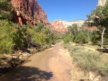 Dry river. Zion national park september 2014 Stock Images